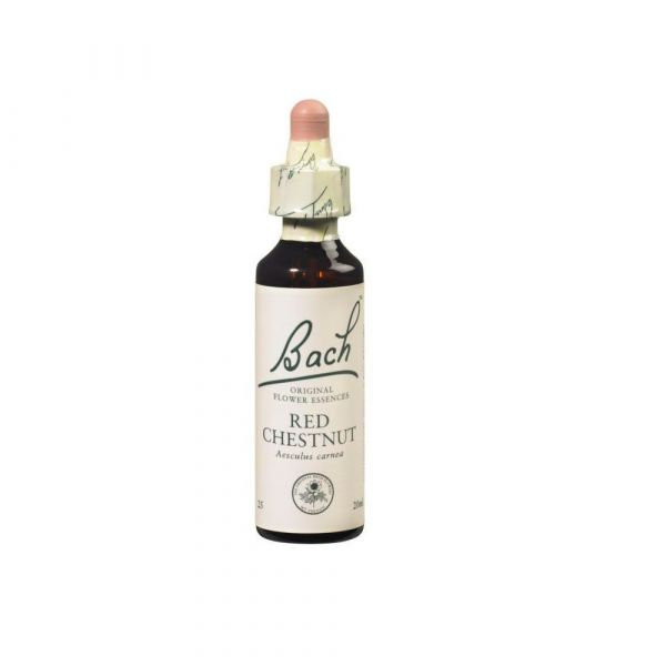 Fleurs de Bach Original - Red chestnut Marronnier rouge - 20ml